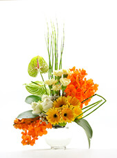 <span>Flower Vase No.12</span>